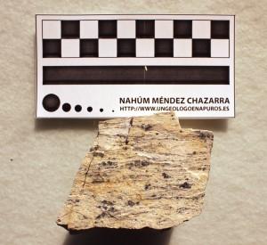 Muestra de mano de un gneis de Sierra Nevada