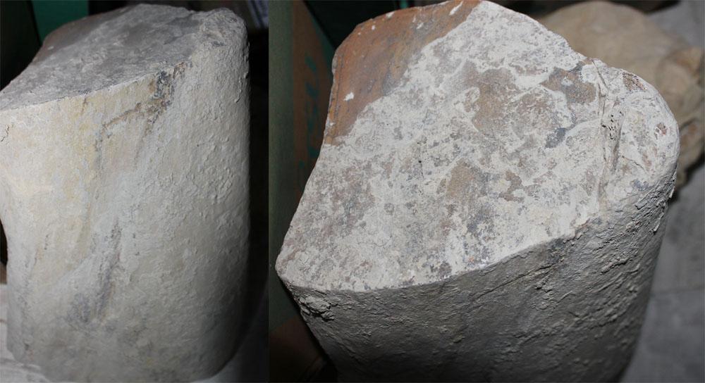 Leña fósil