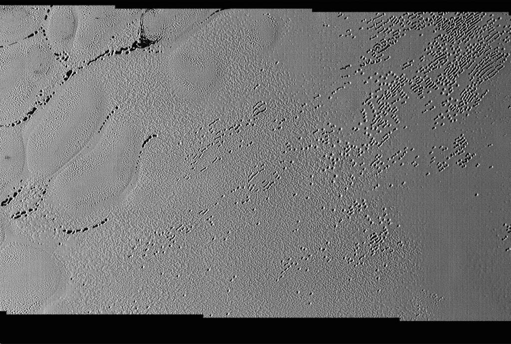 Aquí la imagen de la discordia. En esta se pueden apreciar los hoyos, o pequeñas simas, y otras depresiones alargadas, o fosas. Ni rastro de los abrevaderos ni de Billy Joe. NASA/JHUAPL/SwRI.