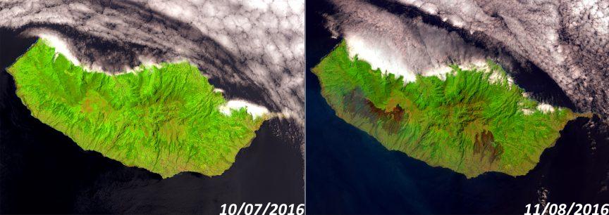 La isla de Madeira, antes (y durante) los incendios que la están asolando. USGS/NASA.